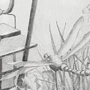 Dragon Fly And Lantern Art Print