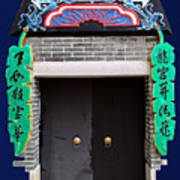 Dragon Girl Door Art Print