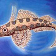 Dragonet Fish Art Print