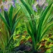 Dragonfly Medicine Art Print