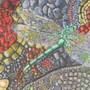 Dragonfly On Stone Path Art Print