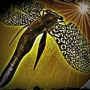 Dragonfly V Art Print