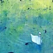 Drake Park Swan Art Print