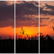 Dramatic Sunset Triptych Art Print