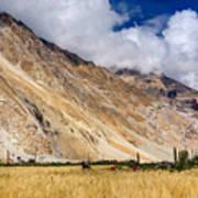 Drass Village Agriculture Kargil Ladakh Jammu And Kashmir India Art Print