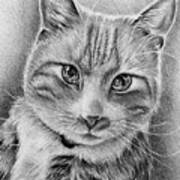 Drawing Of A Cat In Black And White Art Print