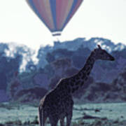 Dream Adventure In Kenya Art Print