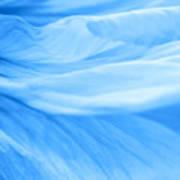 Dream Blue Art Print