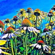 Dream Field Art Print