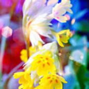 Dream Of Yellow Flowers Art Print