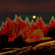 Dreaming Tree Moon Art Print