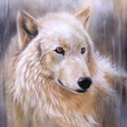 Dreamscape - Wolf II Art Print