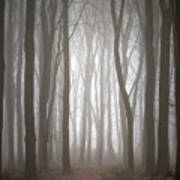 Dreamscape Forest Art Print
