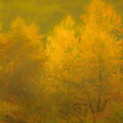Dreamy Autumn Art Print