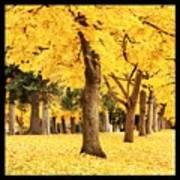 Dreamy Autumn Gold Art Print