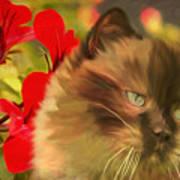 Dreamy Cat With Geranium 2015 Art Print