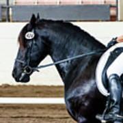 Dressage Horse Show Art Print