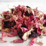 Dried Organic Carnation Petals Art Print