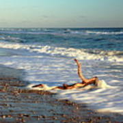 Driftwood In The Surf Art Print