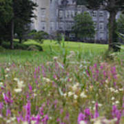 Dromoland Castle  Ireland Art Print