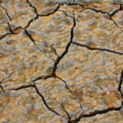 Dry Cracked Lake Bed Art Print