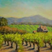 Dry Creek Valley View Art Print