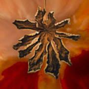 Dry Leaf Collection Digital 1 Art Print