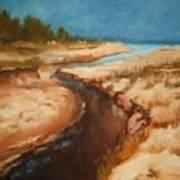 Dry River Bed Print by Nellie Visser