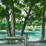 Dubois Park Lagoon Art Print
