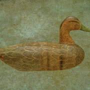 Duck Decoy Number Three Art Print