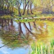 Duck Pond I Art Print