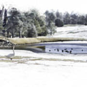 Broadmoor Winter Swim Art Print