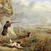 Duck Shooting  Art Print