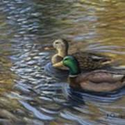 Ducks In The Pond Art Print