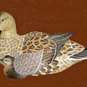 Ducks - Wood Carving Art Print