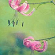 Duet - V01a Art Print