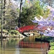 Duke Garden Spring Bridge Art Print
