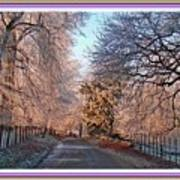 Dundalk Avenue In Winter. L B With Decorative Ornate Printed Frame. Art Print