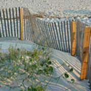 Dune Fence Art Print by Suzanne Gaff
