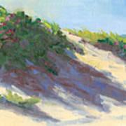 Dune Roses Art Print