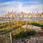 Dunes At Dawn Art Print