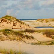 Dunes At Gulf Shore Art Print