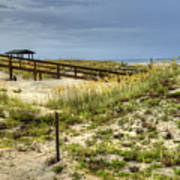 Dunes At Tybee Island Art Print