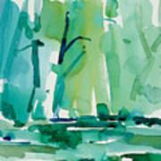 Dunfield-creek-_37-11x14 Art Print