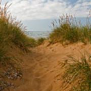 Nova Scotia's Cabot Trail Dunvegan Beach Dunes Art Print