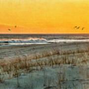 Dusk At The Shore Art Print