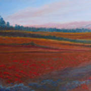 Dusk Falls On The Pumice Field Art Print