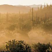 Dust Storm In The Desert Art Print