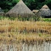 Dyflin Viking Village, Ireland Art Print