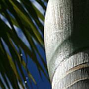 E Hawaii Aloha E Art Print